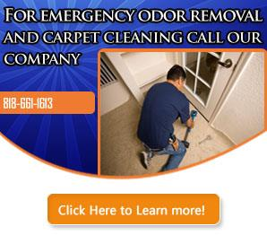 Tips | Carpet Cleaning Sun Valley, CA